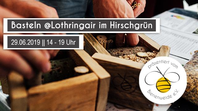 Bild_Lothrinair-im-Hirschgruen