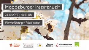 Magdeburger Insektenwelt @ Freie Waldorfschule Magdeburg | Magdeburg | Sachsen-Anhalt | Deutschland